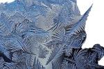 Figure 5: Ice Crystal Fractals