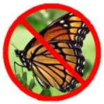 Figure 1: Ban the Butterfly